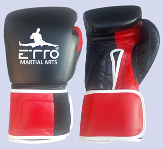 Shop Trainning Boxing Gloves